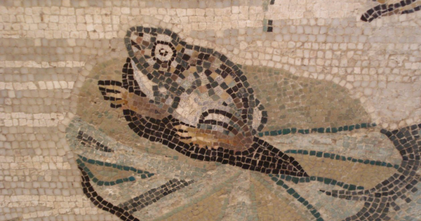 Roman mosaic of a frog on a lily pad