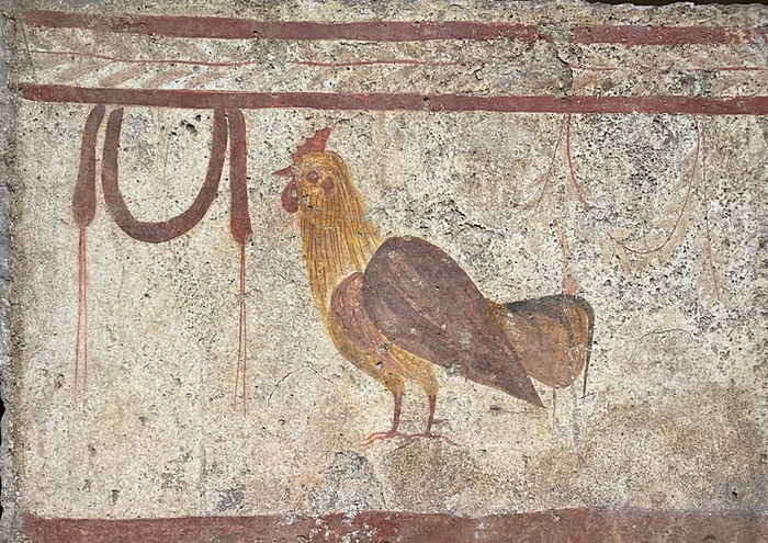 Roman tomb painting of a rooster from Paestum